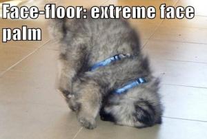 Face-Floor